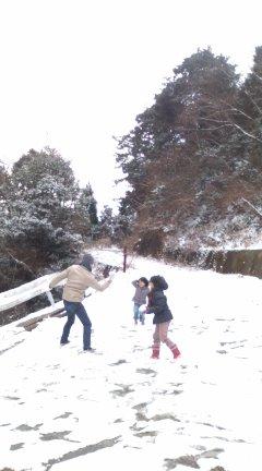 危険な雪見